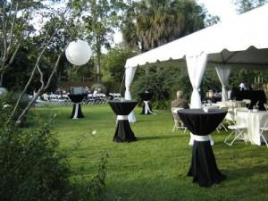 backyard-cheap-wedding-ideas-500x375
